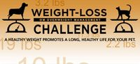 Purina-Pet-weight-loss-challenge