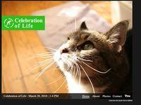 Celebration-of-life