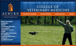 Auburn-University-Veterinary-College-of-Medicine