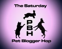 Pet-blogger-hop
