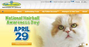 National-hairball-awareness-day
