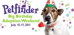 Big-birthday-adoption-weekend2