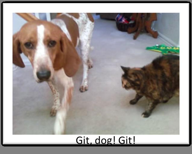 Git-dog-git