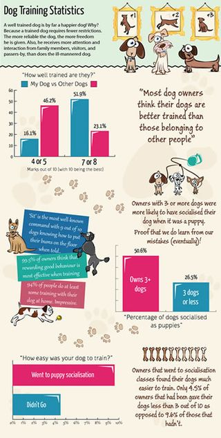 Dog_training_infographic-top