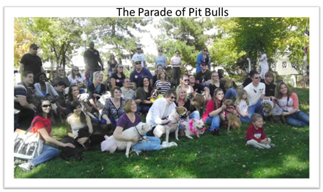 The-Pit-Bull-Parade-Littleton