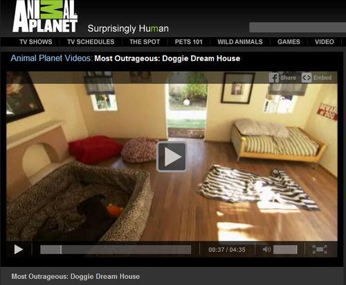 Doggie-dream-house