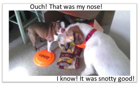 Snotty-good