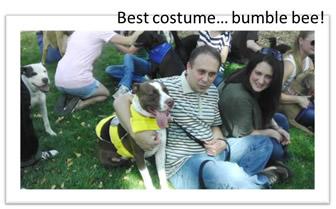 Best-pittie-costume