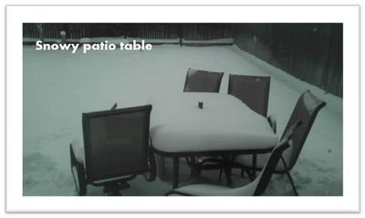 Snowy-table-backyard