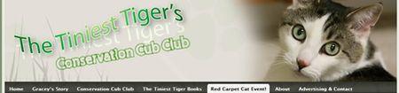 Tiniest-tiger