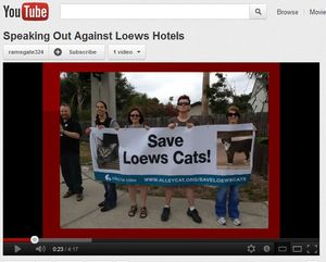 Save-lowes-cats