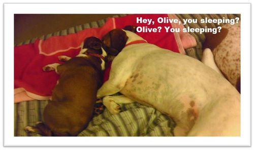 Emily-Olive-sleeping