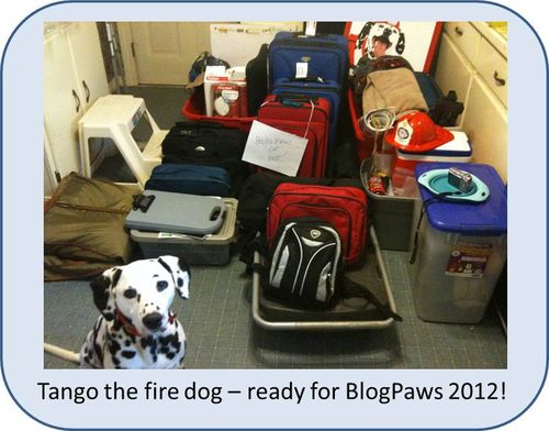 BlogPaws-ready-with-Tango