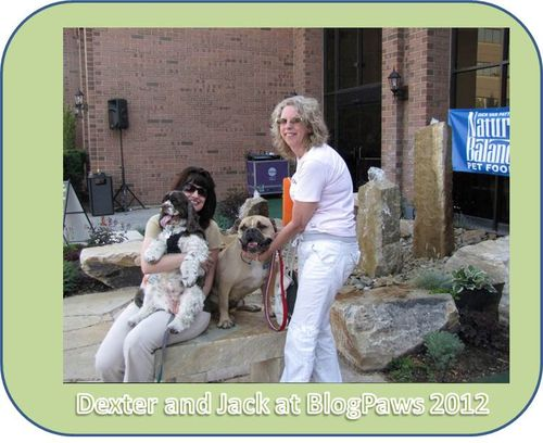 Jack-and-dexter-at-BlogPaws