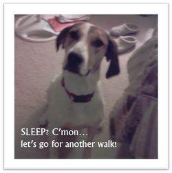 Emily-more-walk