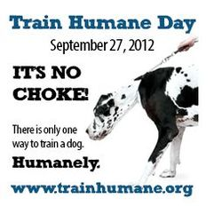 Train-humane-day-photo
