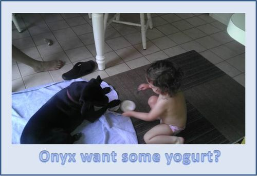 Frankie-feeding-Onyx-yogurt