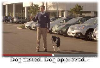 Dog-tested-dog-approved