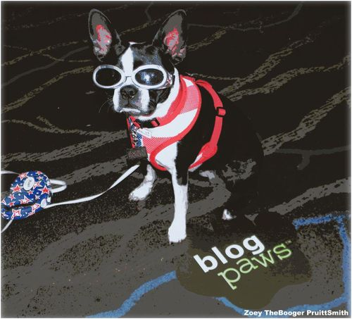 Blogpaws2012-boston