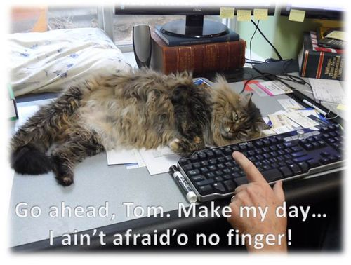 Molly-Tom-desk-finger