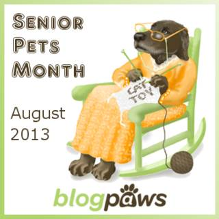 BlogPaws Senior Pets Month