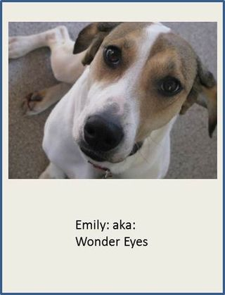 Emily-Wonder-Eyes