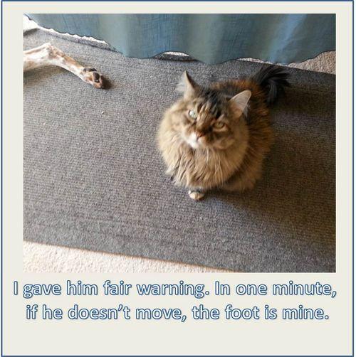 Molly gives warning
