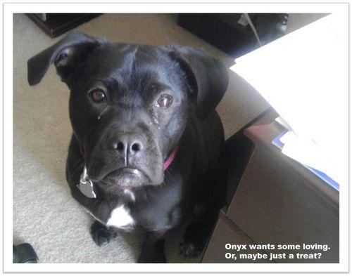 Onyx sad face