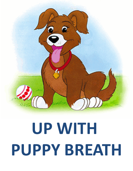 UP WITH PUPPY BREATH