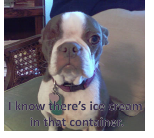 Olive wants Ice Cream