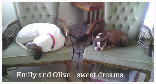 Emily and Olive - sweet dreams.