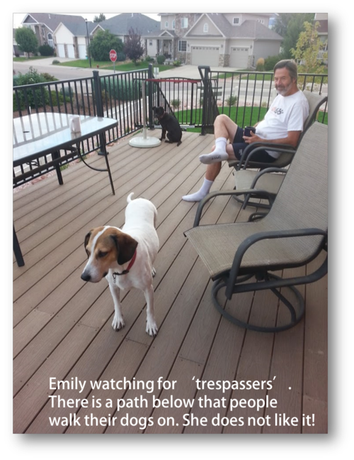 Emily watching for trespassers