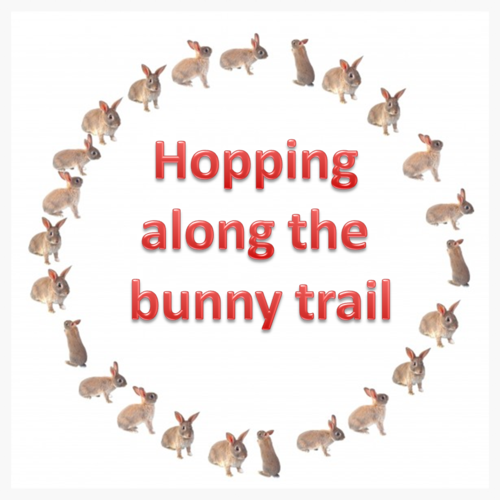 Hopping along the bunny trail