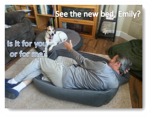 Tom Emily see the new bed