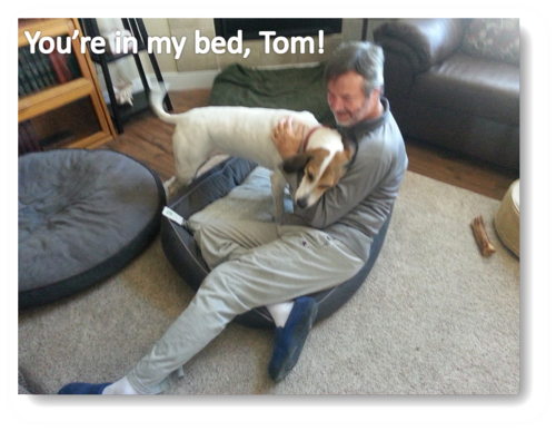 Tom Emily laughing ONP BED