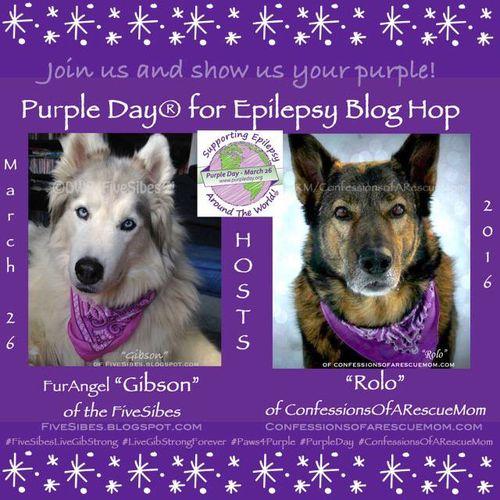 Purple day for epilepsy Emily