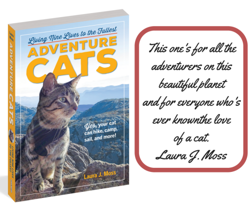 Adventure cats quote from author