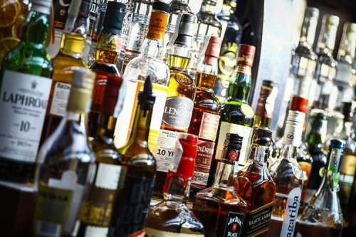Alchohol 7 foods not for cats