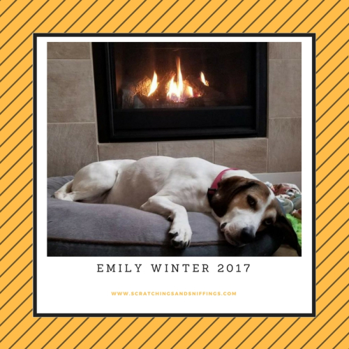 Emily winter fireplace 2018