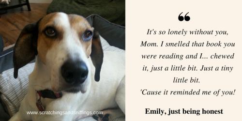 Emily chews a book