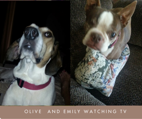 Olive and emily tv
