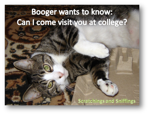Booger goes to college
