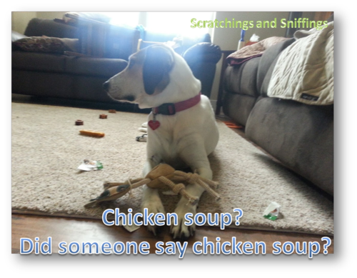 Chicken soup for dinner Emily