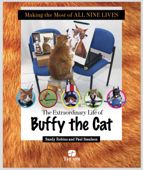 Buffy the cat