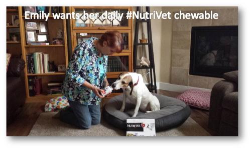 Nutrivet chewable emily