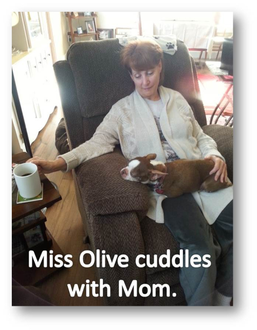 Mom Olive Cuddle