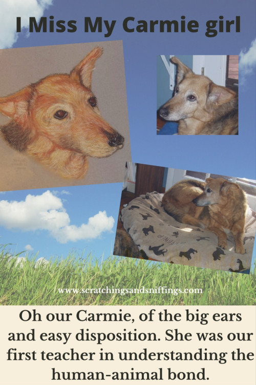 Our carmie girl