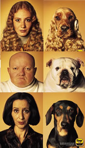 People_who_look_like_their_dogs