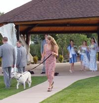 Chloewedding_with_raznor_her_dog